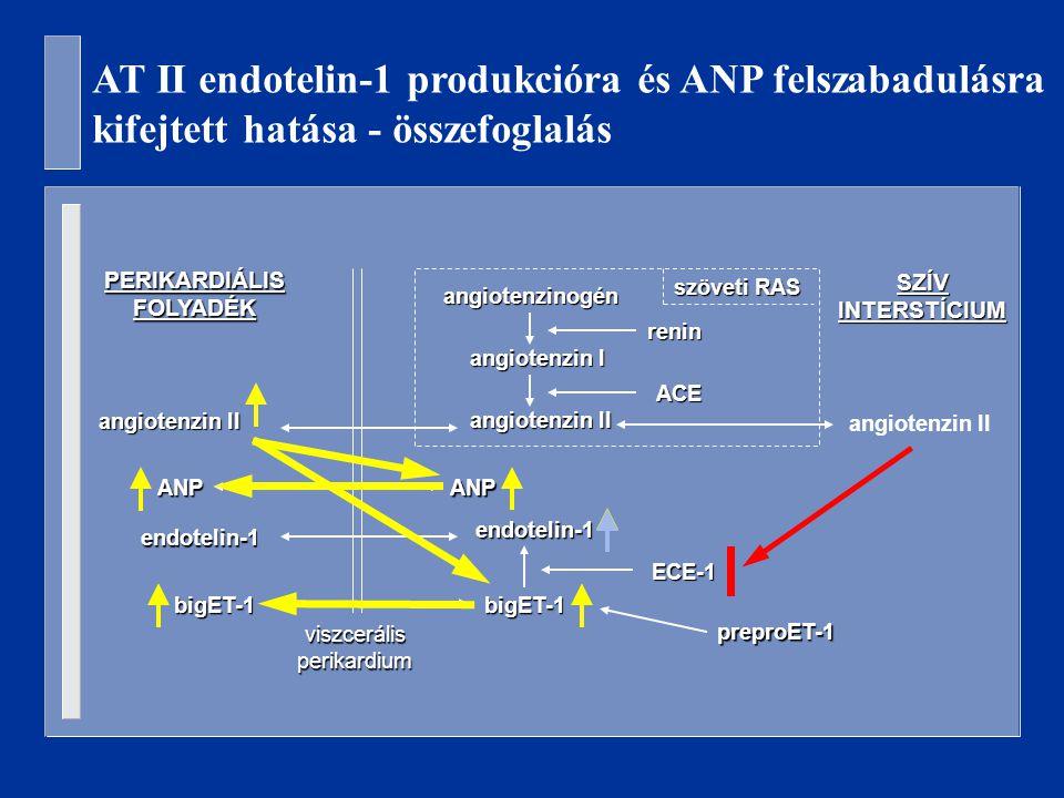 AT II endotelin-1 produkcióra és ANP felszabadulásra kifejtett hatása - összefoglalás PERIKARDIÁLIS FOLYADÉK SZÍV INTERSTÍCIUM viszcerális perikardium endotelin-1 preproET-1 bigET-1 ECE-1 angiotenzinogén angiotenzin I angiotenzin II renin ACE szöveti RAS angiotenzin II endotelin-1 bigET-1 ANPANP