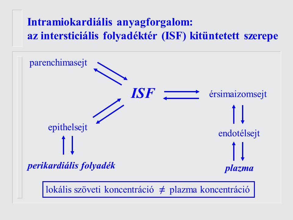 Intramiokardiális anyagforgalom: az intersticiális folyadéktér (ISF) kitüntetett szerepe ISF parenchimasejt érsimaizomsejt endotélsejt plazma perikardiális folyadék epithelsejt lokális szöveti koncentráció ≠ plazma koncentráció