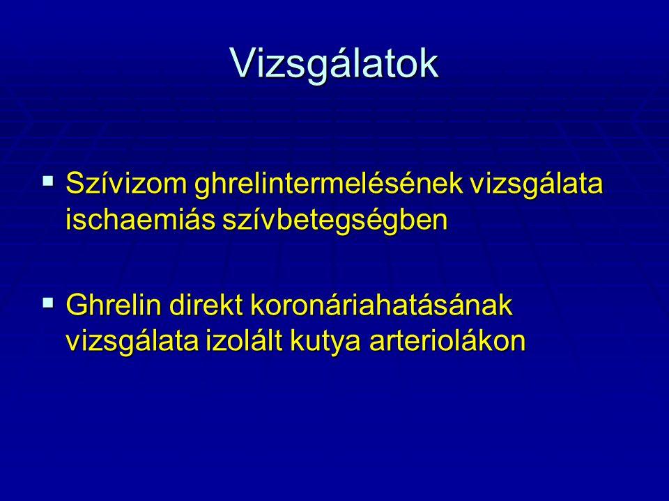 A ghrelin receptorok vizsgálata immunhisztokémiával kutya koszorúereken → primer antitest: nyúlban termelt humán GHS-R1a, GHS-R1b elleni antitestek → detektálás: - biotinilált szekunder antitest - avidin-biotinperoxidáz komplex (ABC) - kromogénként diaminobenzidin (DAB) - háttérfestés hematoxylinnal → pozitív kontroll: kutya hipotalamusz GHS-R1a, GHS-R1b pozitív sejtek → negatív kontroll: elsődleges antitest elhagyása → antitestek validálása Western blot technikával 27kDa 35kDa 55kDa 70kDa 100kDa 130kDa 250kDa 15kDa 27kDa 35kDa 55kDa 70kDa 100kDa 130kDa 250kDa GHS-R1a 44 kDa GHS-R1b 32 kDa