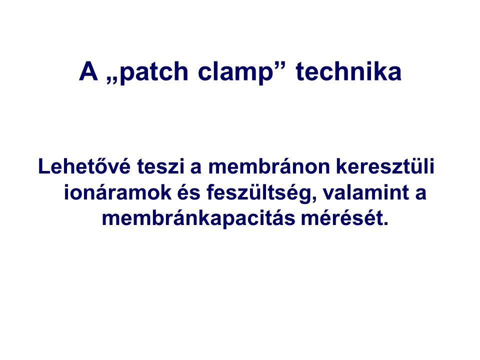 """A """"patch clamp technika Lehetővé teszi a membránon keresztüli ionáramok és feszültség, valamint a membránkapacitás mérését."""