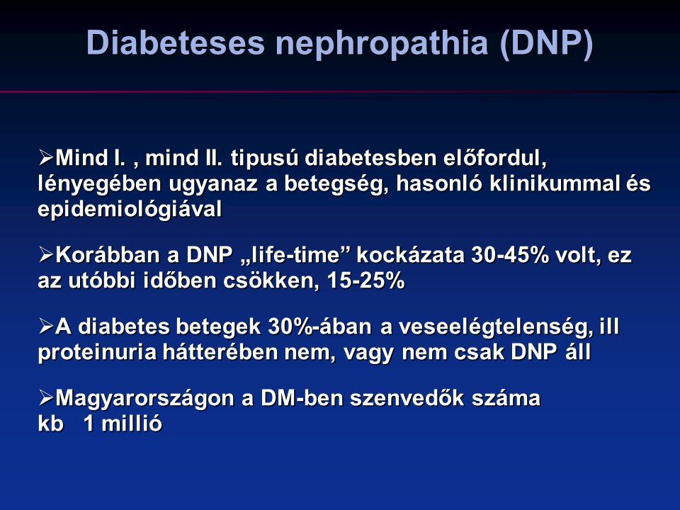 A DNP kezelésének szempontjai  fogyás  Dohányzás  testmozgás  vércukor kontroll  vérnyomás kontroll  RAAS gátlása (ACEI/ARB – COMBO TERÁPIA)  lipidek