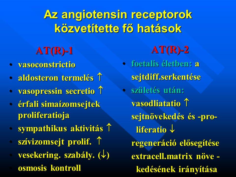 Az angiotensin receptorok közvetítette fő hatások AT(R)-1 vasoconstrictiovasoconstrictio aldosteron termelés aldosteron termelés  vasopressin secretio vasopressin secretio  érfali simaízomsejtek proliferatiojaérfali simaízomsejtek proliferatioja sympathikus aktivitás sympathikus aktivitás  szívizomsejt prolif.