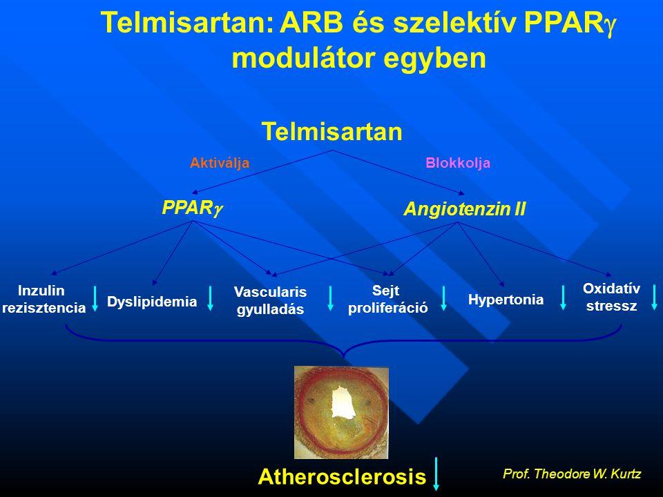 Inzulin rezisztencia Hypertonia Vascularis gyulladás Sejt proliferáció Oxidatív stressz Dyslipidemia Telmisartan PPAR  Angiotenzin II Atherosclerosis AktiváljaBlokkolja Telmisartan: ARB és szelektív PPAR  modulátor egyben Prof.