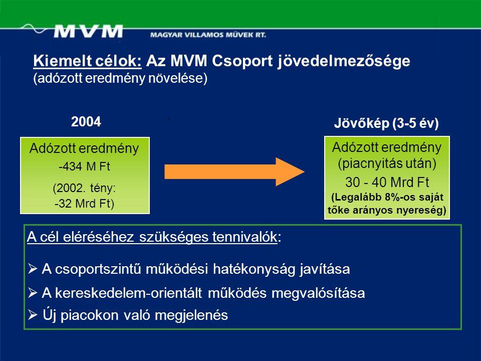 Kiemelt célok: Az MVM Csoport jövedelmezősége (adózott eredmény növelése) 2004 Jövőkép (3-5 év) A cél eléréséhez szükséges tennivalók:  A csoportszin