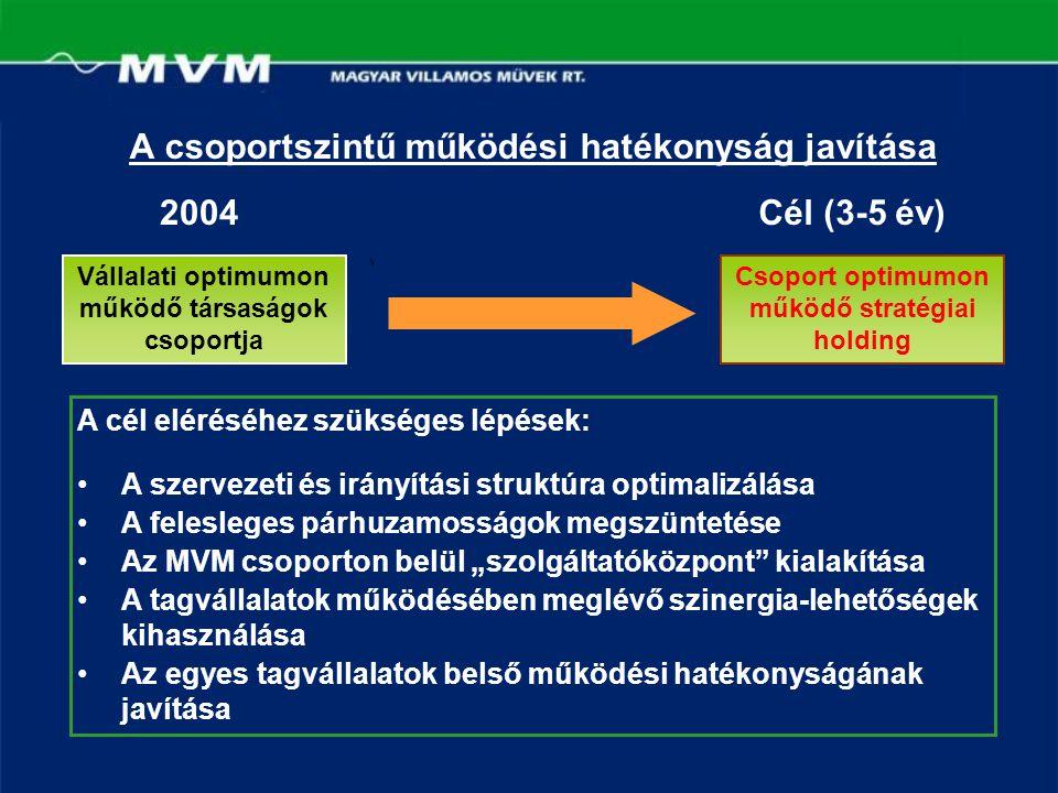 A csoportszintű működési hatékonyság javítása 2004Cél (3-5 év) A cél eléréséhez szükséges lépések: A szervezeti és irányítási struktúra optimalizálása