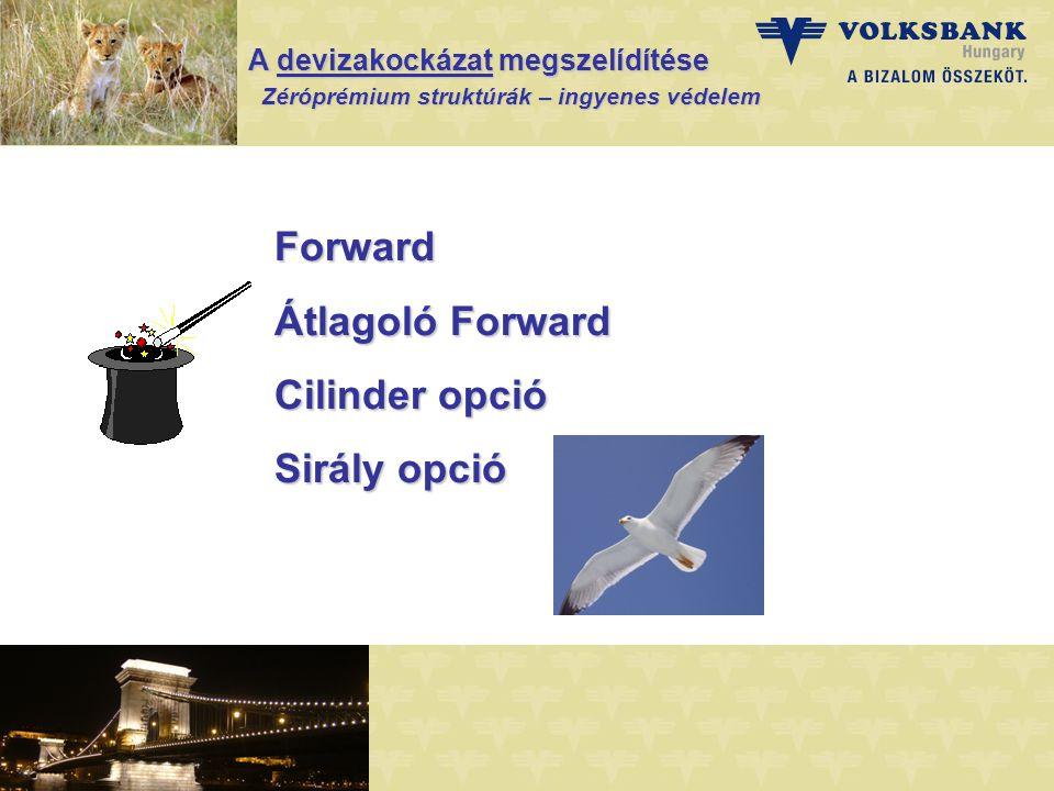 A devizakockázat megszelídítése Zéróprémium struktúrák – ingyenes védelem Zéróprémium struktúrák – ingyenes védelem Forward Átlagoló Forward Cilinder opció Sirály opció