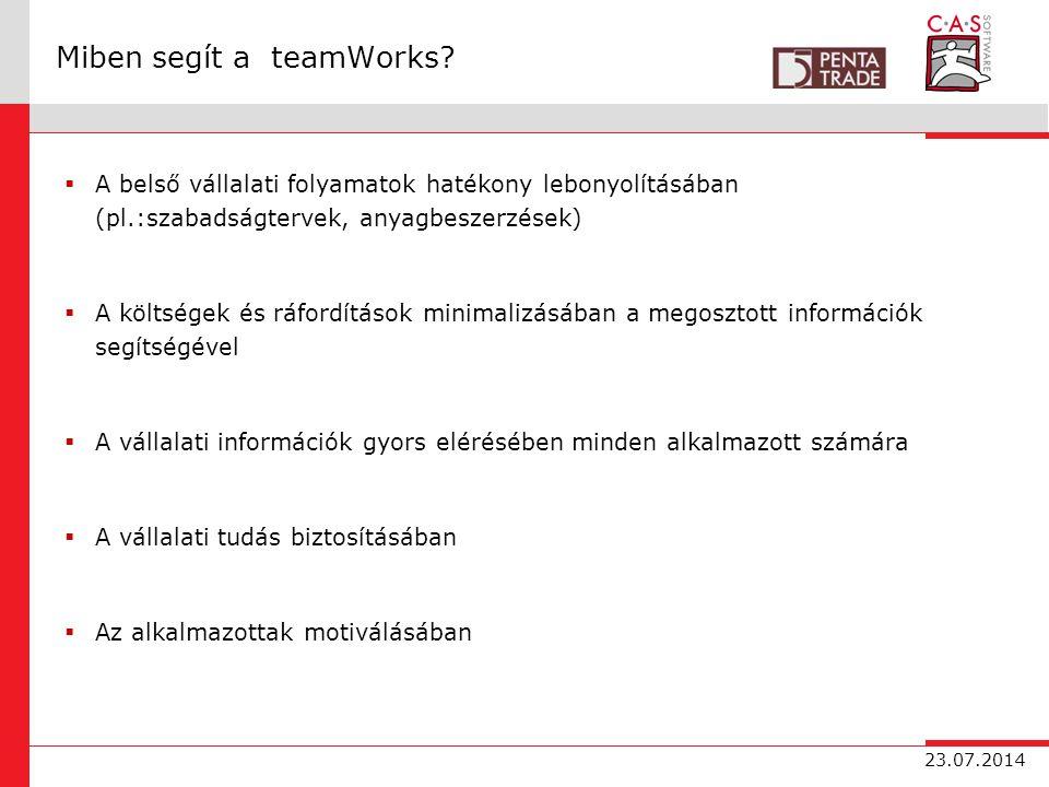 23.07.2014 Miben segít a teamWorks.