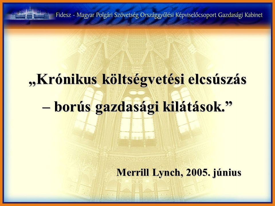 """""""Krónikus költségvetési elcsúszás – borús gazdasági kilátások."""" Merrill Lynch, 2005. június"""