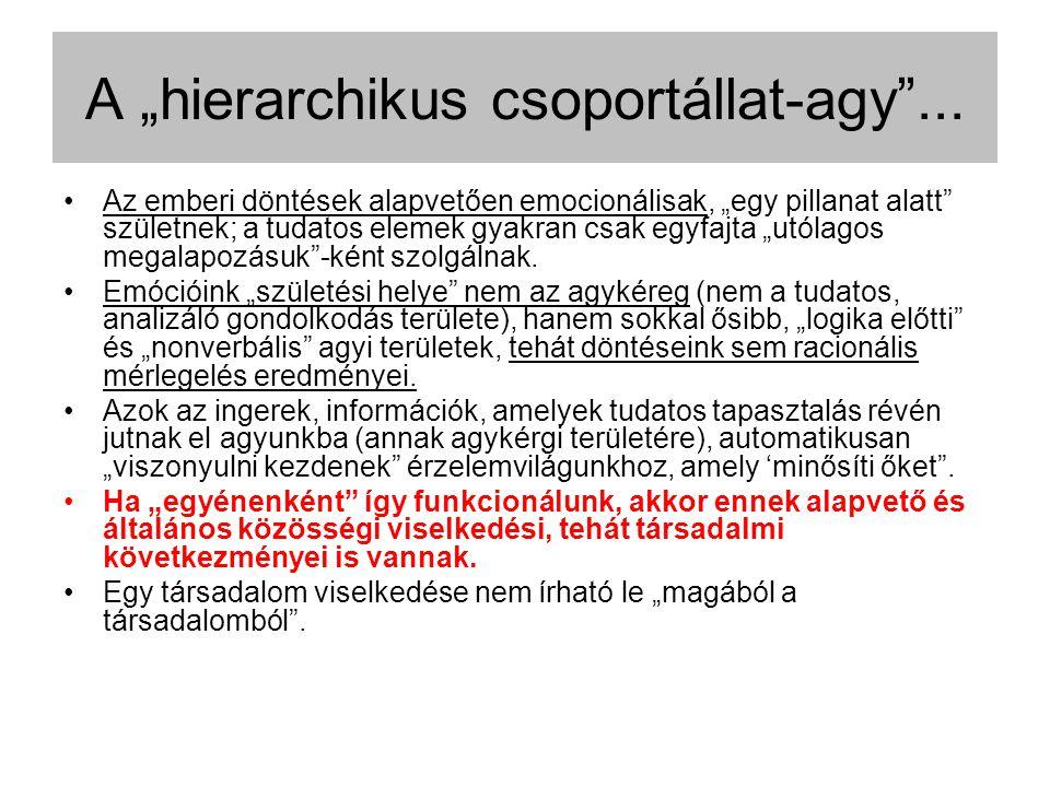 """A """"hierarchikus csoportállat-agy ..."""