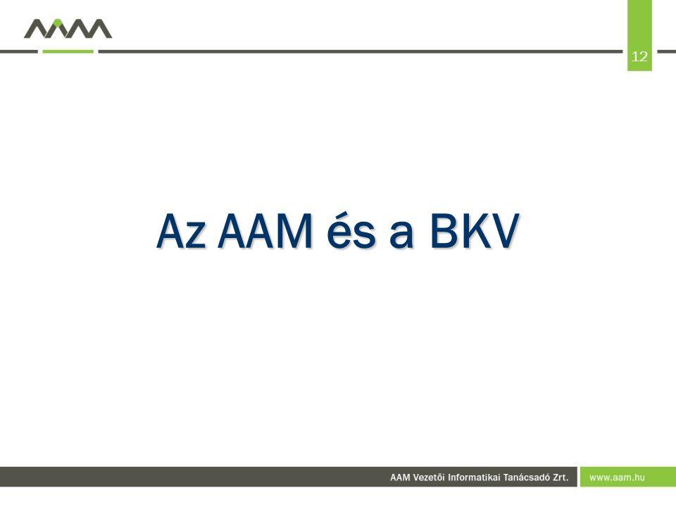 12 Az AAM és a BKV