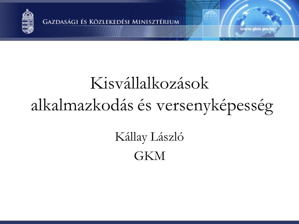 Kisvállalkozások alkalmazkodás és versenyképesség Kállay László GKM