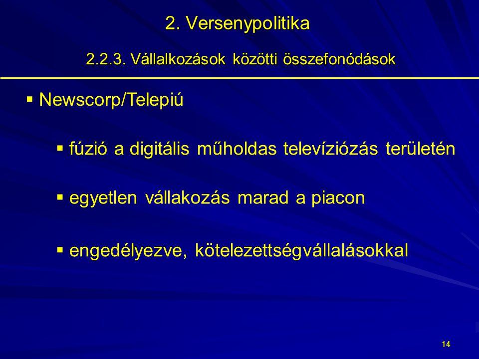 13 2.Versenypolitika 2.2.3.