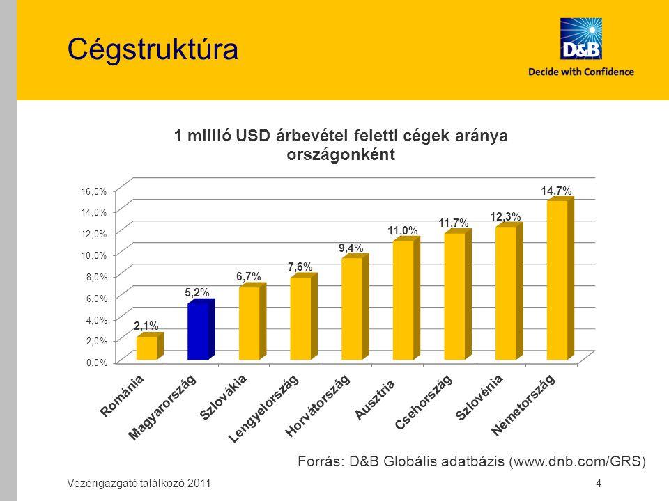 Cégstruktúra Vezérigazgató találkozó 2011 4 Forrás: D&B Globális adatbázis (www.dnb.com/GRS)