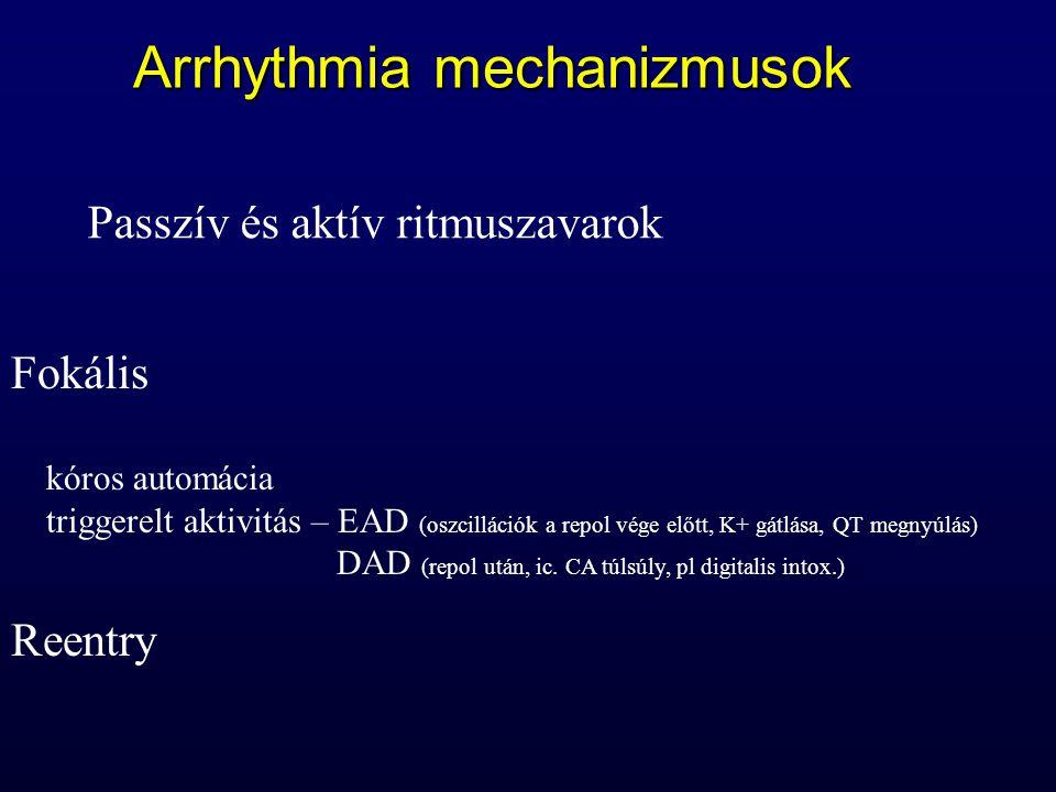 Arrhythmia mechanizmusok Fokális kóros automácia triggerelt aktivitás – EAD (oszcillációk a repol vége előtt, K+ gátlása, QT megnyúlás) DAD (repol utá