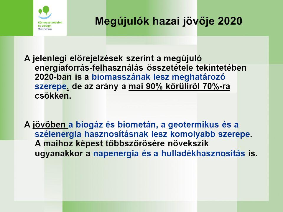 Megújulók hazai jövője 2020 A jelenlegi előrejelzések szerint a megújuló energiaforrás-felhasználás összetétele tekintetében 2020-ban is a biomasszának lesz meghatározó szerepe, de az arány a mai 90% körüliről 70%-ra csökken.