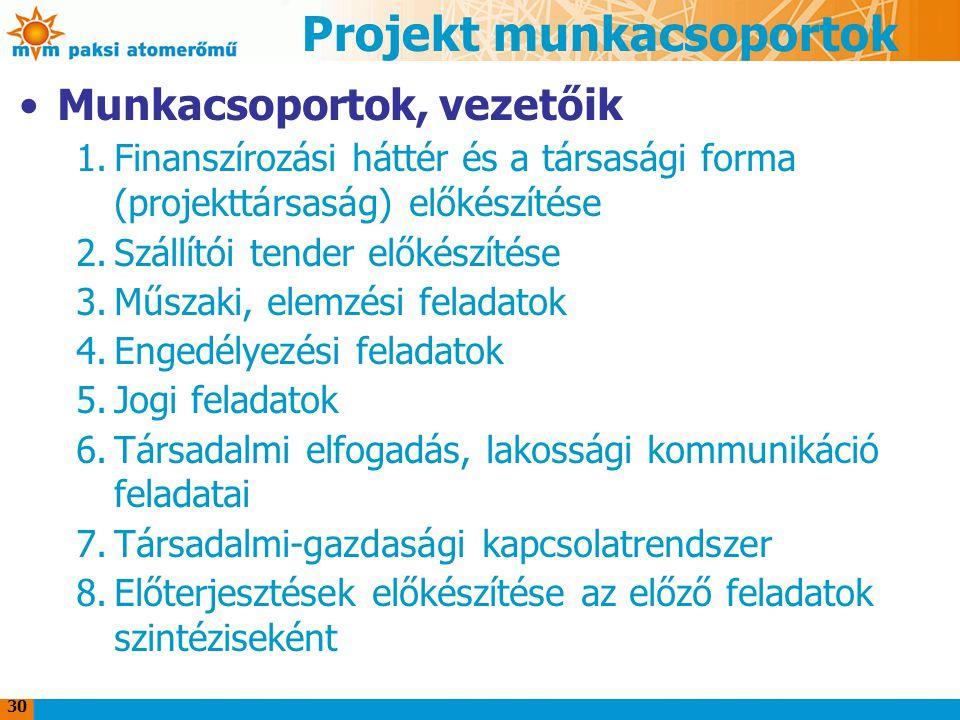 30 Projekt munkacsoportok Munkacsoportok, vezetőik 1.Finanszírozási háttér és a társasági forma (projekttársaság) előkészítése 2.Szállítói tender elők