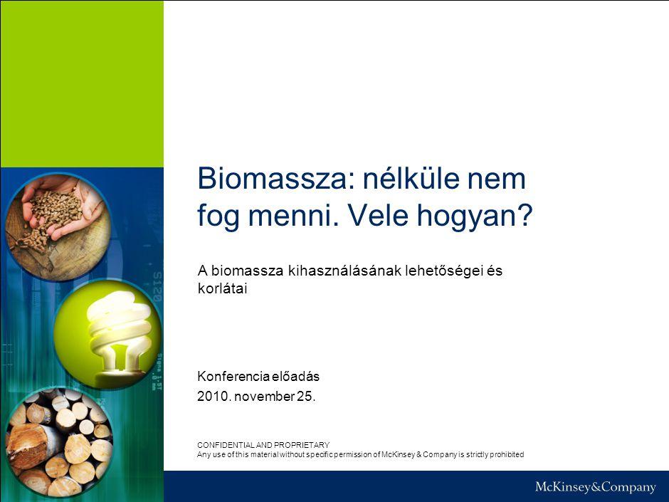 Biomassza: nélküle nem fog menni. Vele hogyan? Konferencia előadás 2010. november 25. CONFIDENTIAL AND PROPRIETARY Any use of this material without sp
