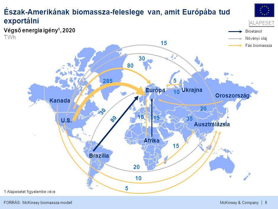 McKinsey & Company | 8 Bioetanol Növényi olaj Fás biomassza Oroszország Ukrajna 15 30 285 80 30 20 35 20 15 10 80 10 5 Európa Kanada U.S. Brazília Afr