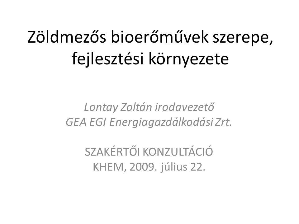 Zöldmezős bioerőművek szerepe, fejlesztési környezete Lontay Zoltán irodavezető GEA EGI Energiagazdálkodási Zrt.