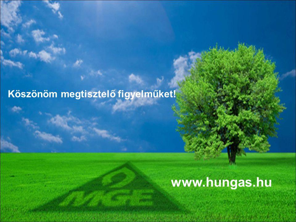 17 Köszönöm megtisztelő figyelműket! www.hungas.hu