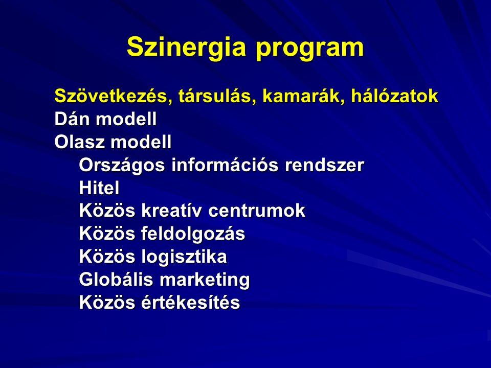 Szinergia program Szövetkezés, társulás, kamarák, hálózatok Dán modell Olasz modell Országos információs rendszer Hitel Közös kreatív centrumok Közös feldolgozás Közös logisztika Globális marketing Közös értékesítés