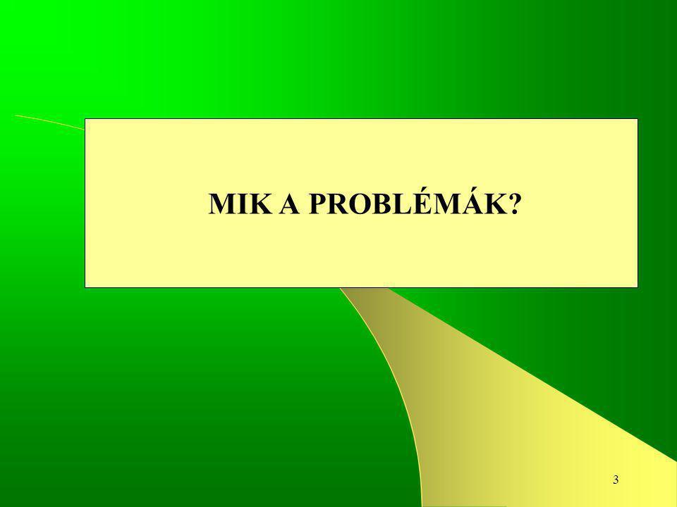 3 MIK A PROBLÉMÁK?