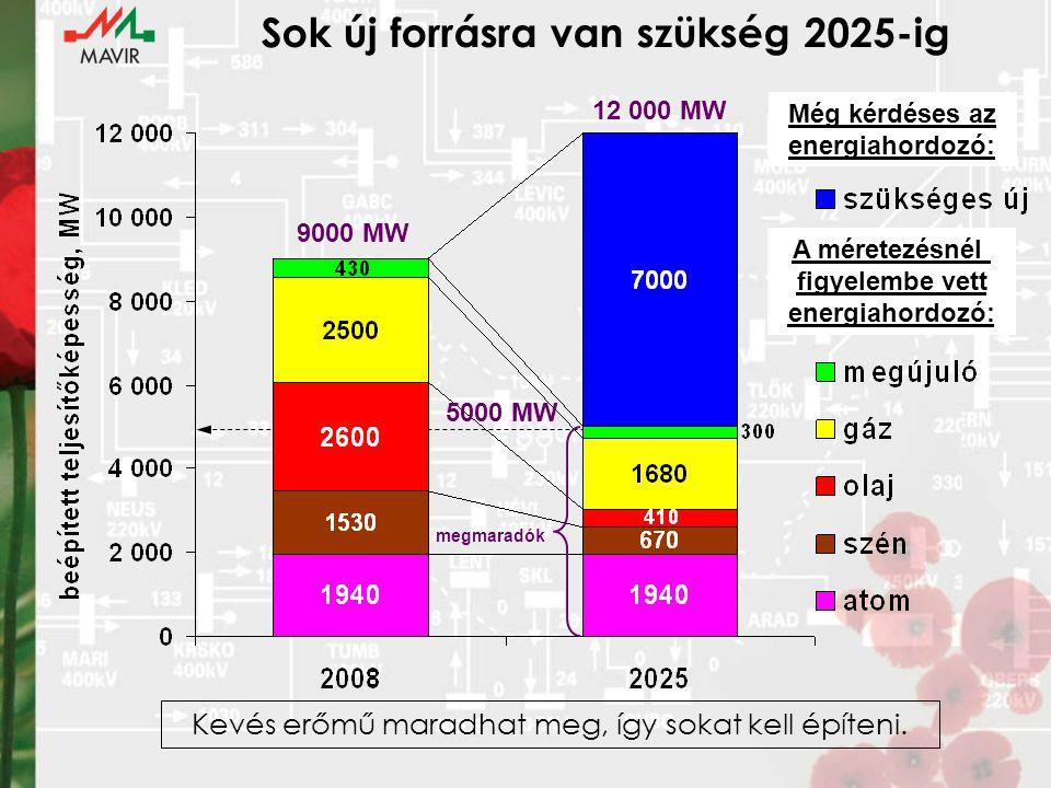 Sok új forrásra van szükség 2025-ig A méretezésnél figyelembe vett energiahordozó: 9000 MW 12 000 MW Még kérdéses az energiahordozó: megmaradók 5000 MW Kevés erőmű maradhat meg, így sokat kell építeni.