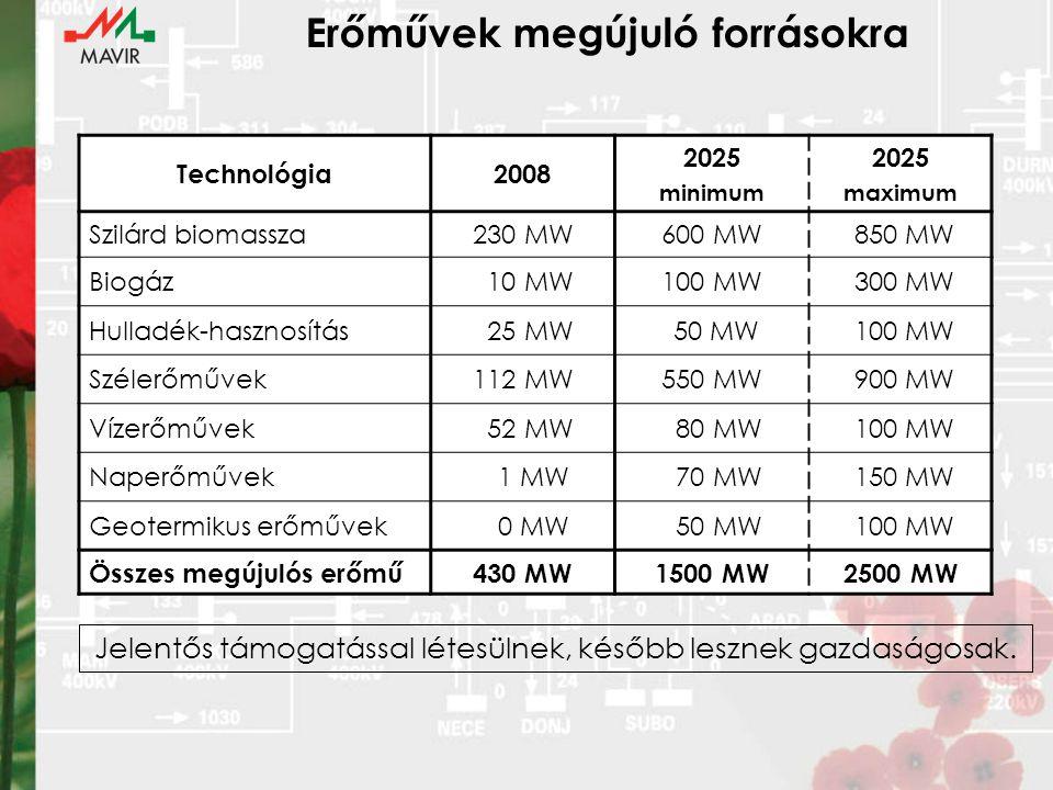 Erőművek megújuló forrásokra Technológia2008 2025 minimum 2025 maximum Szilárd biomassza230 MW600 MW 850 MW Biogáz 10 MW100 MW 300 MW Hulladék-hasznosítás 25 MW 50 MW 100 MW Szélerőművek112 MW550 MW 900 MW Vízerőművek 52 MW 80 MW 100 MW Naperőművek 1 MW 70 MW 150 MW Geotermikus erőművek 0 MW 50 MW 100 MW Összes megújulós erőmű430 MW1500 MW2500 MW Jelentős támogatással létesülnek, később lesznek gazdaságosak.