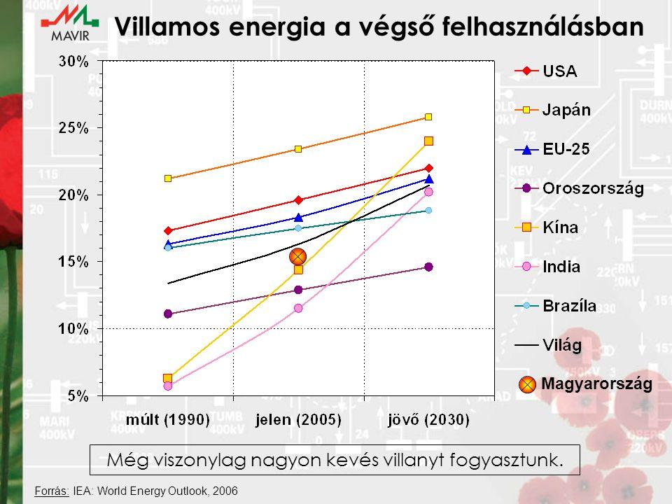 Villamos energia a végső felhasználásban Magyarország Forrás: IEA: World Energy Outlook, 2006 Még viszonylag nagyon kevés villanyt fogyasztunk.