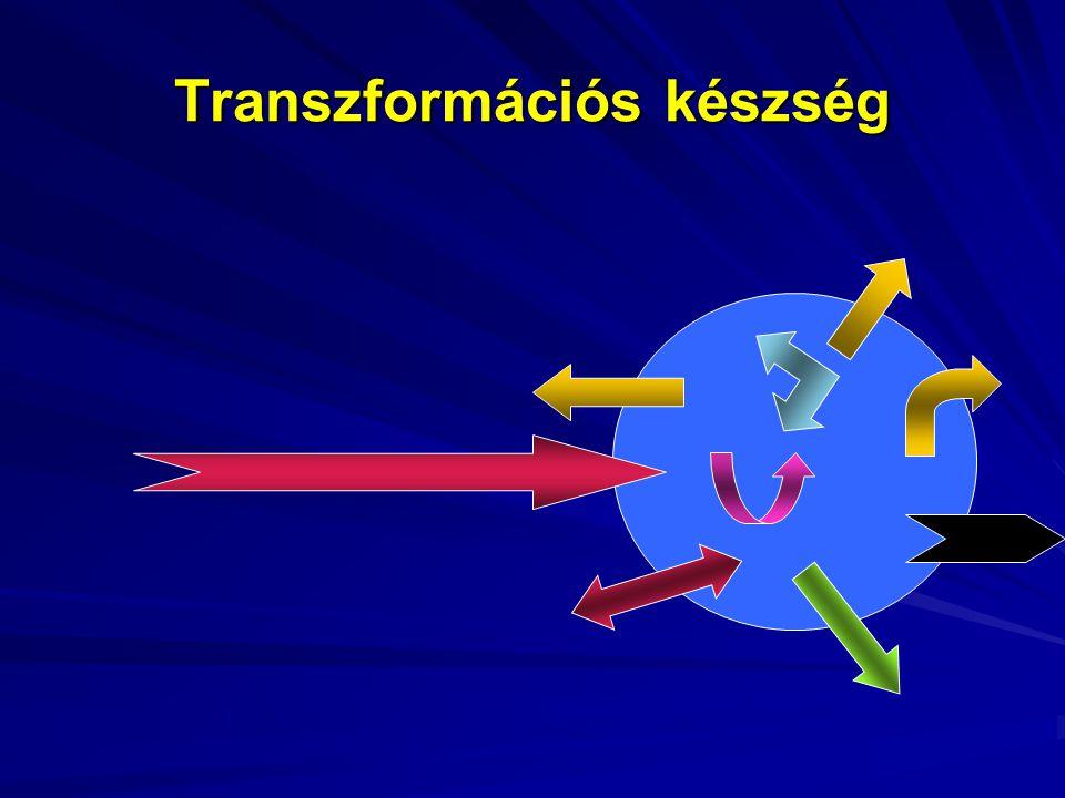 Transzformációs készség