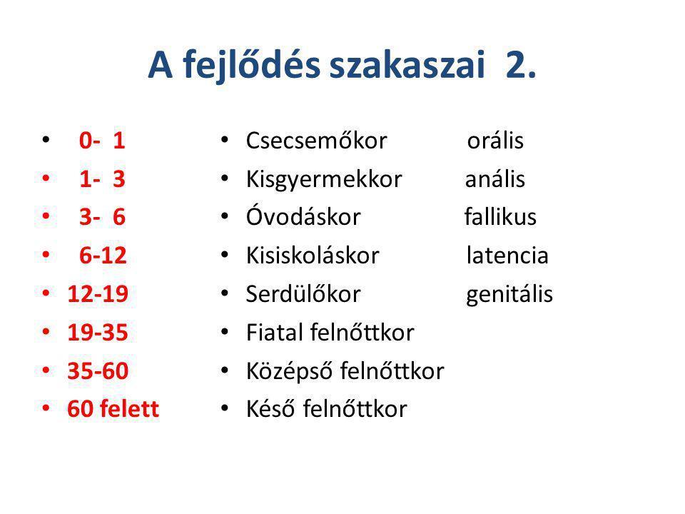 A fejlődés szakaszai 2. 0- 1 1- 3 3- 6 6-12 12-19 19-35 35-60 60 felett Csecsemőkor orális Kisgyermekkor anális Óvodáskor fallikus Kisiskoláskor laten