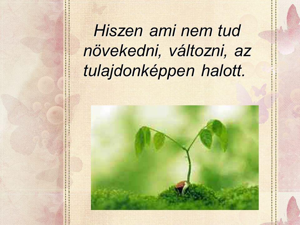Hiszen ami nem tud növekedni, változni, az tulajdonképpen halott. Hiszen ami nem tud növekedni, változni, az tulajdonképpen halott.