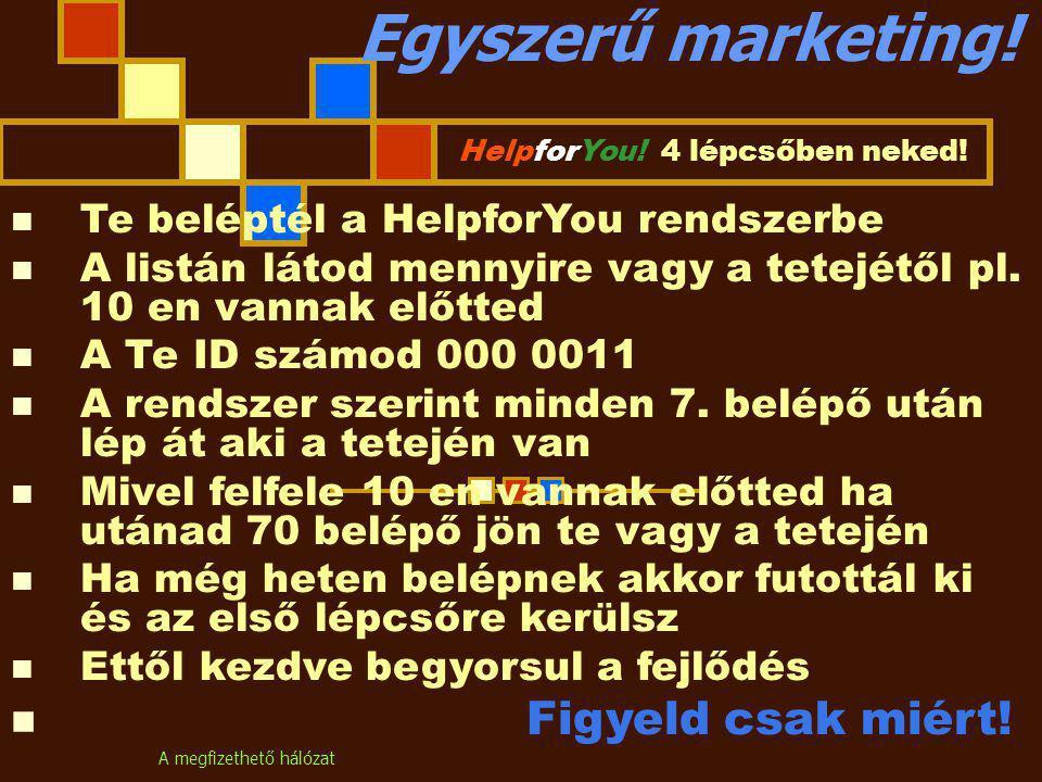 A megfizethető hálózat Egyszerű marketing.HelpforYou.