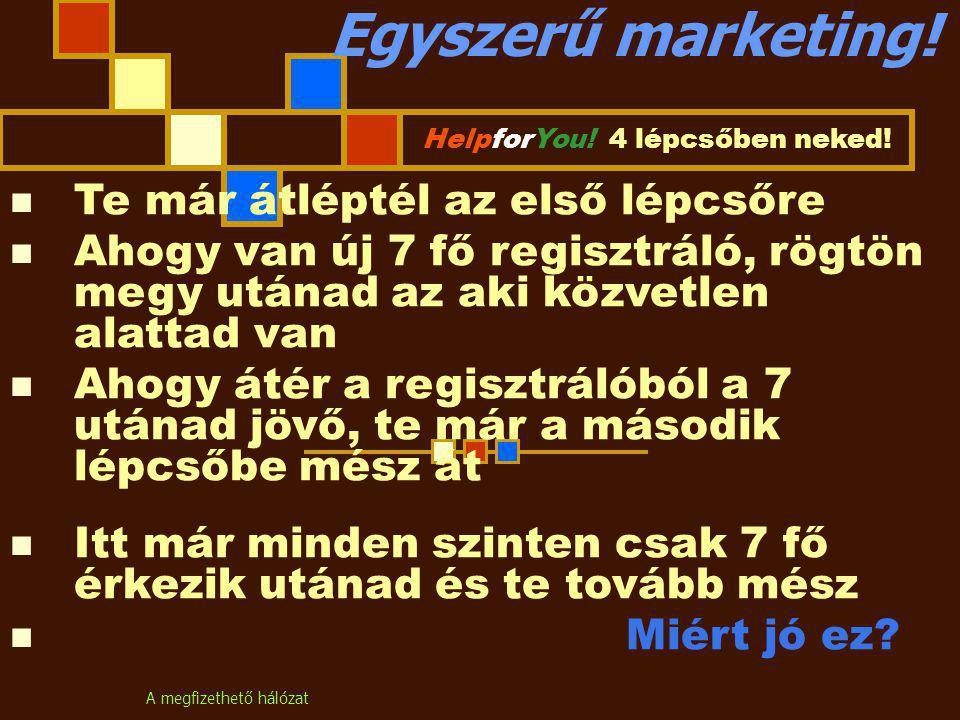 A megfizethető hálózat Egyszerű marketing. HelpforYou.