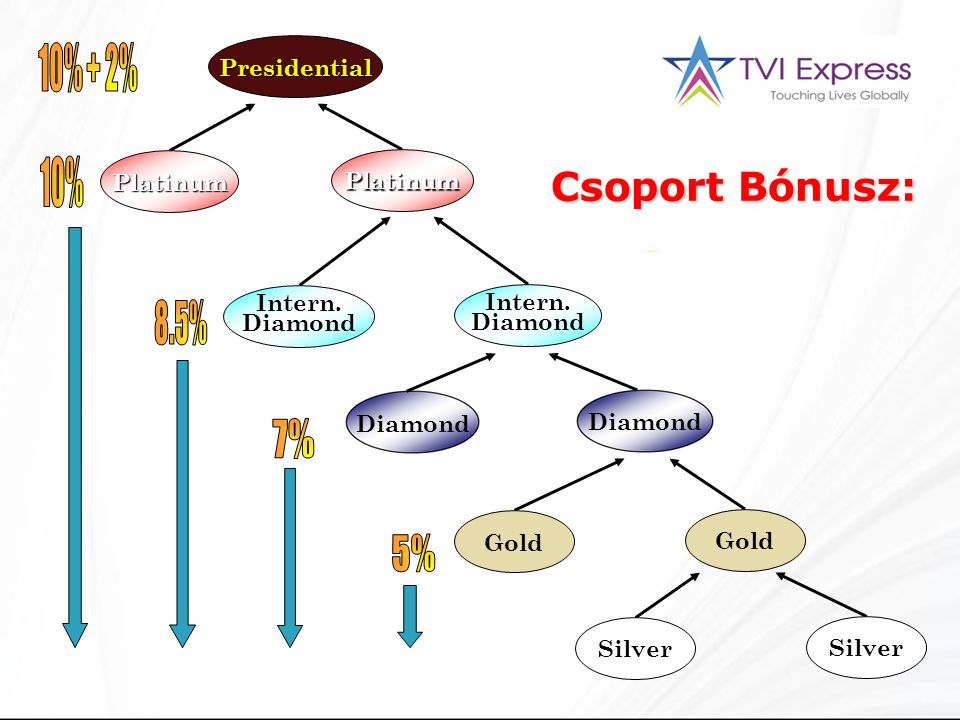 Silver Gold Diamond Intern. Diamond Platinum Presidential Silver Gold Diamond Intern.