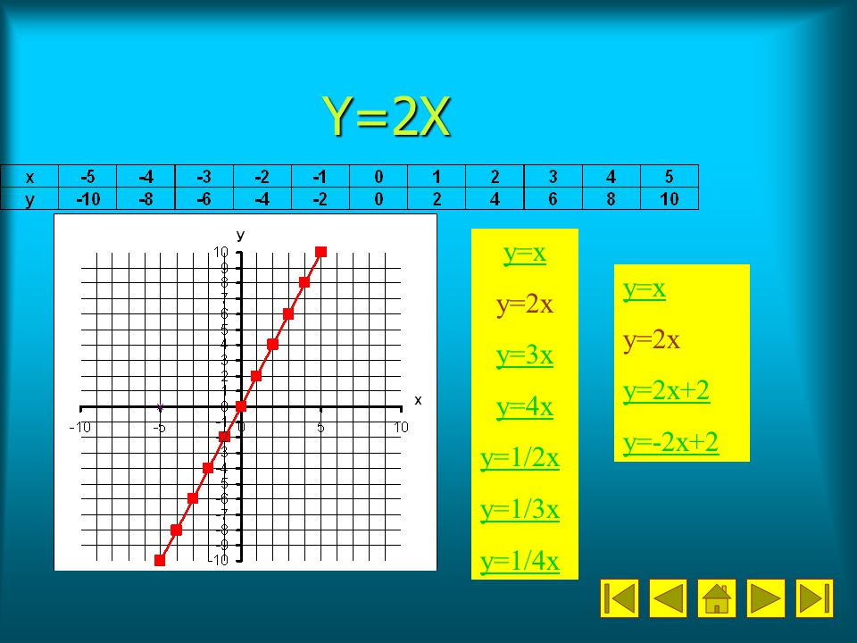 Y=3X y=x y=2x y=3x y=4x y=1/2x y=1/3x y=1/4x