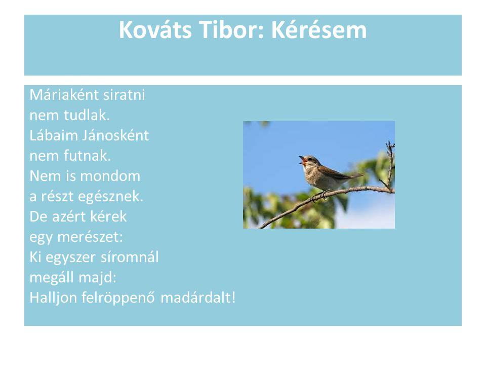 Kováts Tibor: Kérésem Máriaként siratni nem tudlak.