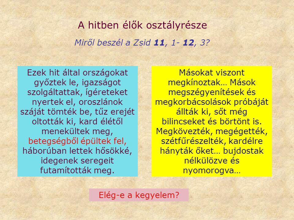 A hitben élők osztályrésze Miről beszél a Zsid 11, 1- 12, 3? Ezek hit által országokat győztek le, igazságot szolgáltattak, ígéreteket nyertek el, oro
