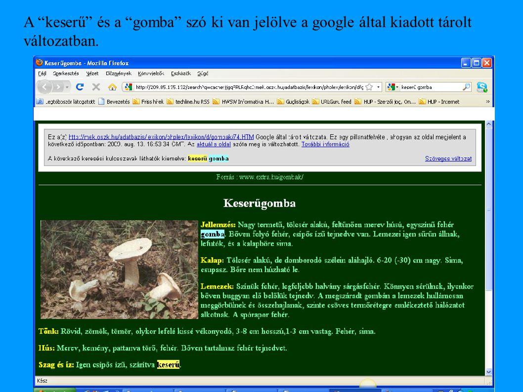 """A """"keserű"""" és a """"gomba"""" szó ki van jelölve a google által kiadott tárolt változatban."""