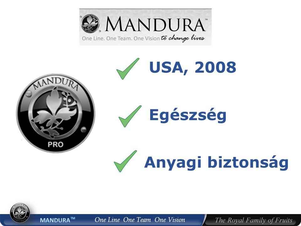 USA, 2008 Egészség Anyagi biztonság