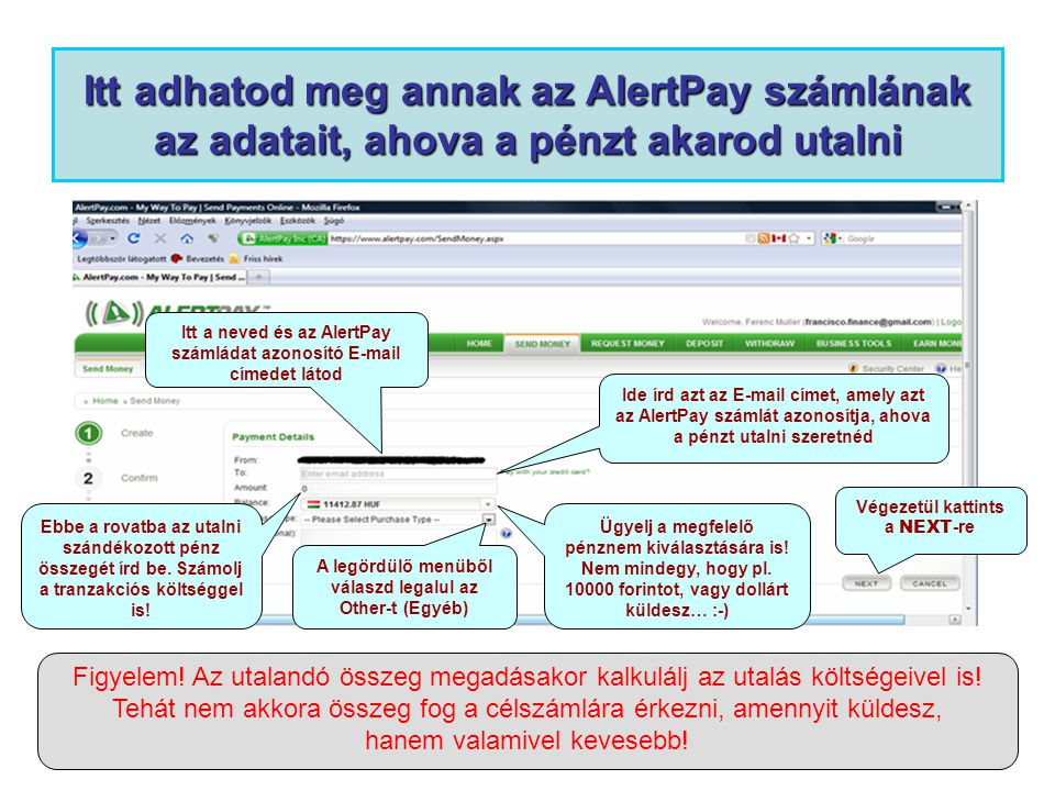 Itt adhatod meg annak az AlertPay számlának az adatait, ahova a pénzt akarod utalni Itt a neved és az AlertPay számládat azonosító E-mail címedet látod Ide írd azt az E-mail címet, amely azt az AlertPay számlát azonosítja, ahova a pénzt utalni szeretnéd Ebbe a rovatba az utalni szándékozott pénz összegét írd be.