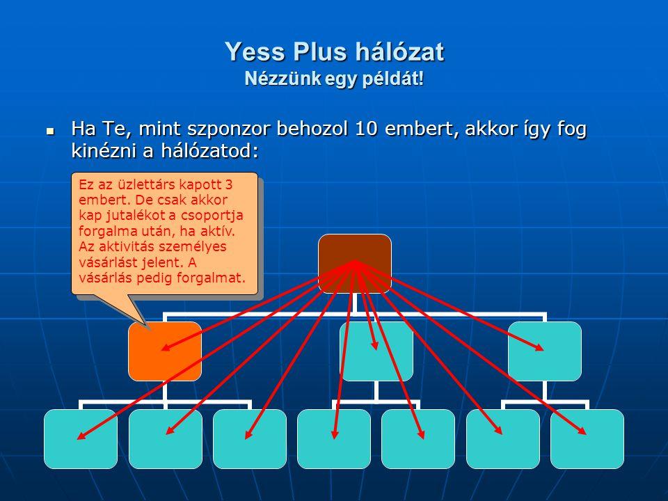Yess Plus hálózat Nézzünk egy példát! Ha Te, mint szponzor behozol 10 embert, akkor így fog kinézni a hálózatod: Ha Te, mint szponzor behozol 10 ember
