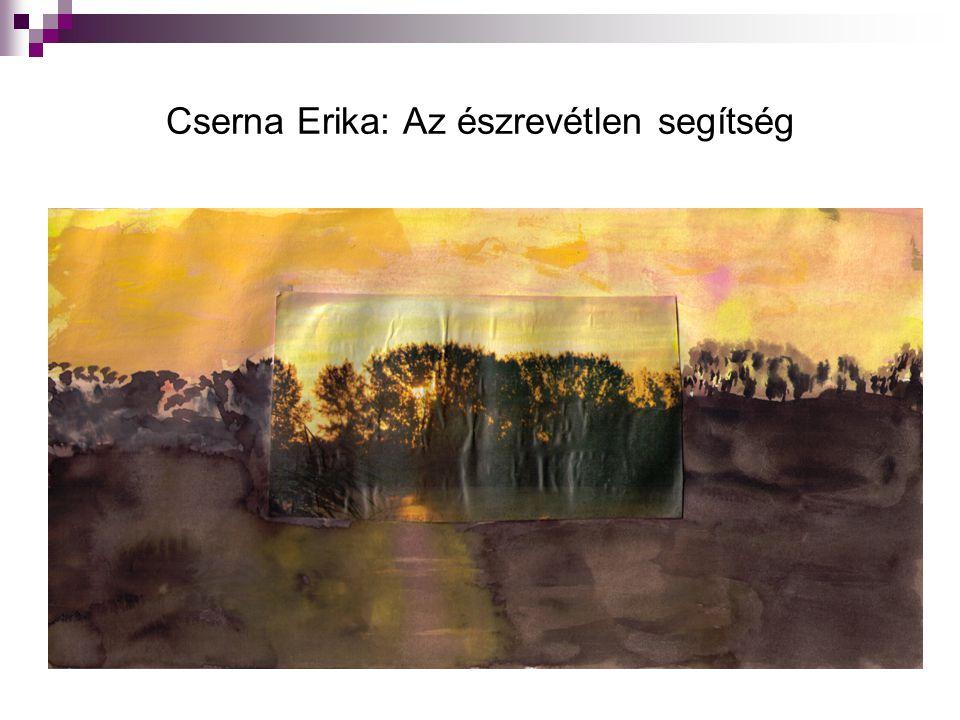 Cserna Erika: Az észrevétlen segítség