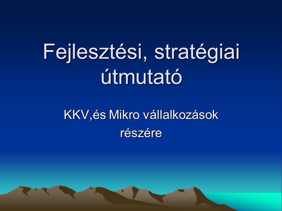 Fejlesztési, stratégiai útmutató KKV,és Mikro vállalkozások részére