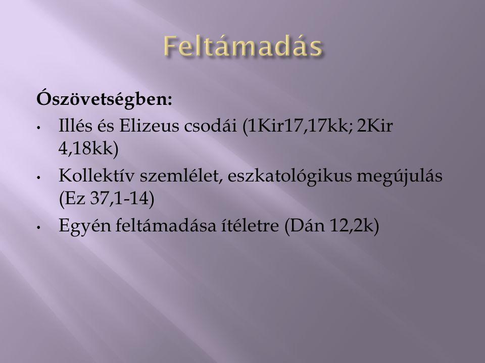 Ószövetségben: Illés és Elizeus csodái (1Kir17,17kk; 2Kir 4,18kk) Kollektív szemlélet, eszkatológikus megújulás (Ez 37,1-14) Egyén feltámadása ítéletre (Dán 12,2k)