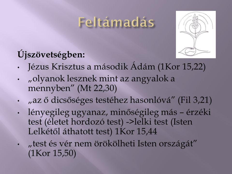 """Újszövetségben: Jézus Krisztus a második Ádám (1Kor 15,22) """"olyanok lesznek mint az angyalok a mennyben (Mt 22,30) """"az ő dicsőséges testéhez hasonlóvá (Fil 3,21) lényegileg ugyanaz, minőségileg más – érzéki test (életet hordozó test) ->lelki test (Isten Lelkétől áthatott test) 1Kor 15,44 """"test és vér nem örökölheti Isten országát (1Kor 15,50)"""