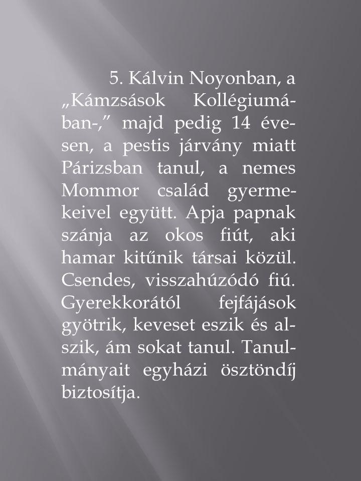 """5. Kálvin Noyonban, a """"Kámzsások Kollégiumá- ban-,"""" majd pedig 14 éve- sen, a pestis járvány miatt Párizsban tanul, a nemes Mommor család gyerme- keiv"""