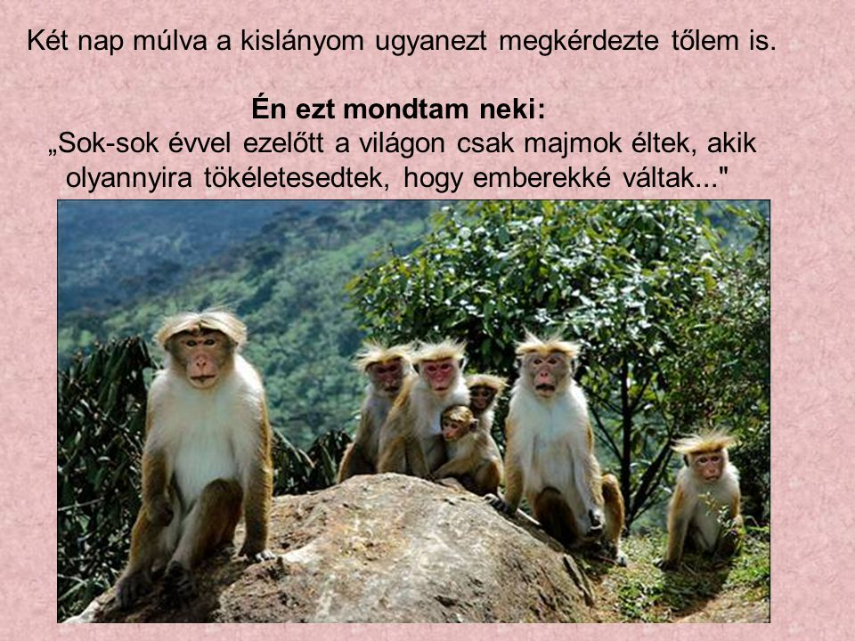 """Két nap múlva a kislányom ugyanezt megkérdezte tőlem is. Én ezt mondtam neki: """"Sok-sok évvel ezelőtt a világon csak majmok éltek, akik olyannyira töké"""