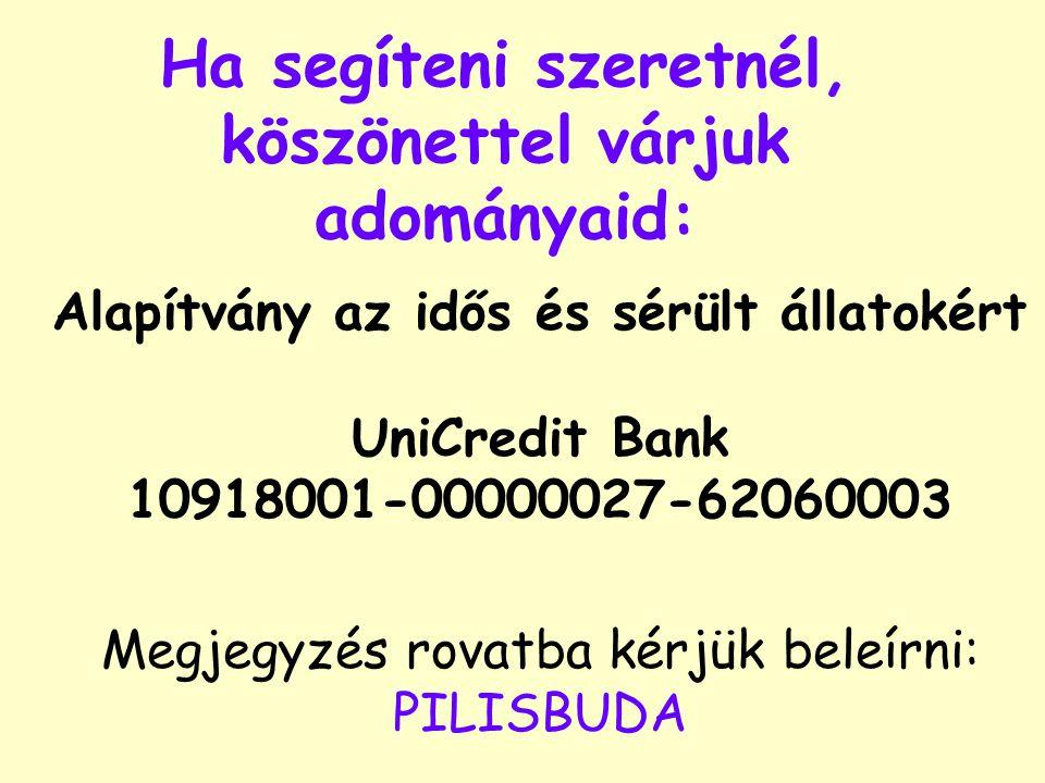 Ha segíteni szeretnél, köszönettel várjuk adományaid: Alapítvány az idős és sérült állatokért UniCredit Bank 10918001-00000027-62060003 Megjegyzés rovatba kérjük beleírni: PILISBUDA