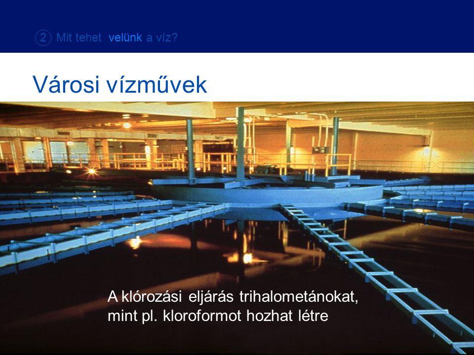 A klórozási eljárás trihalometánokat, mint pl. kloroformot hozhat létre Városi vízművek 2 Mit tehet velünk a víz?